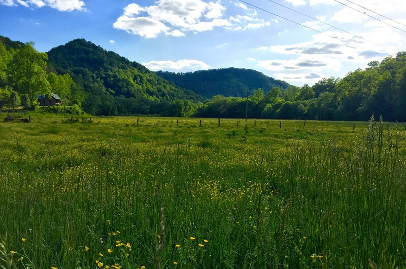 A panorama of Eastern Kentucky Holler