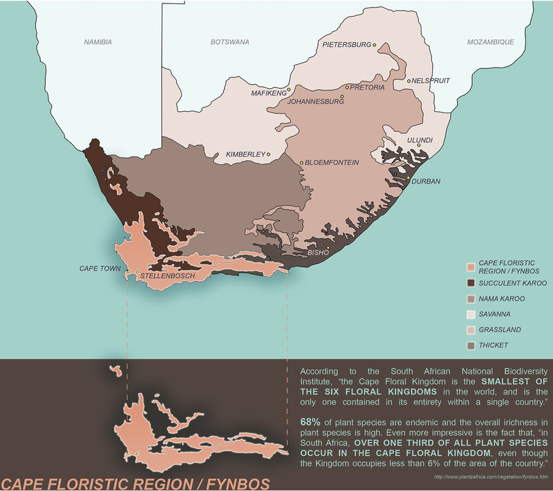 A map indicating the location of the Cape Floristic Region in South Africa