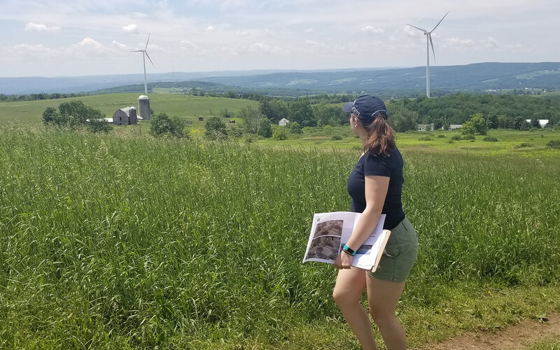 Meaghan Keefe looks across a vista at two large wind turbines at Hardscrabble Wind Farm in Fairfield, New York