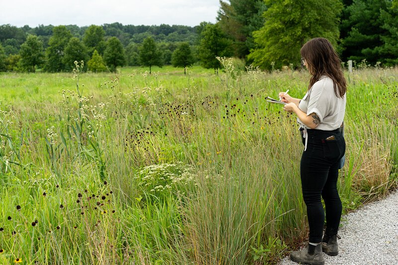 Chloe observes a lush green landscape at Glenstone