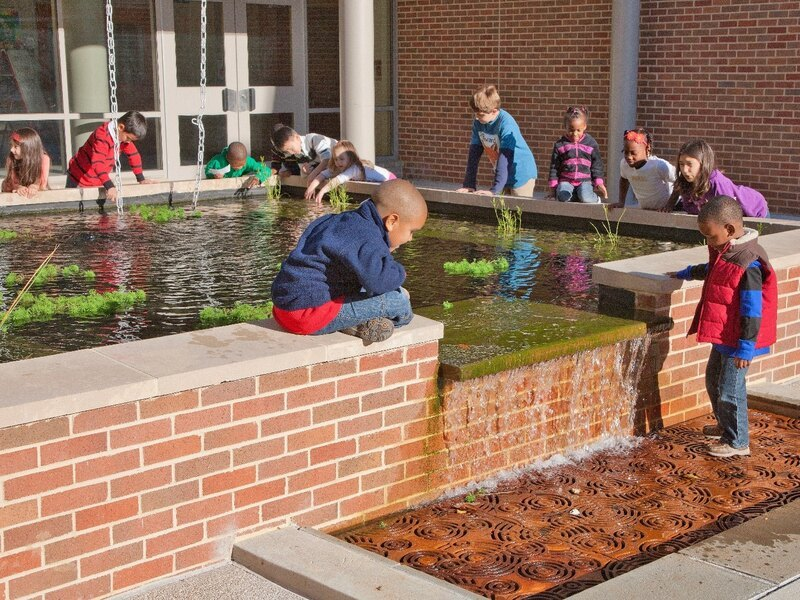 Children at Ducketts Lane Elementary School interact with the touching pool as part of their environmental education.