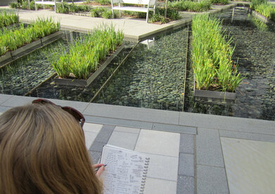 A researcher takes counts and notes in an urban plaza