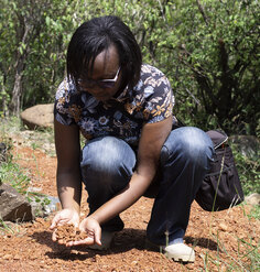 2019 CSI research assistant Carolyne Wanza Nthiwa crouches down to examine the material of a pathway