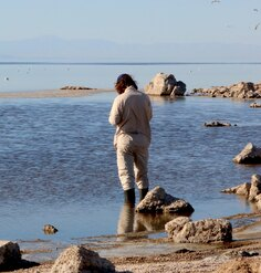 Hans Baumann collecting information at the Salton Sea